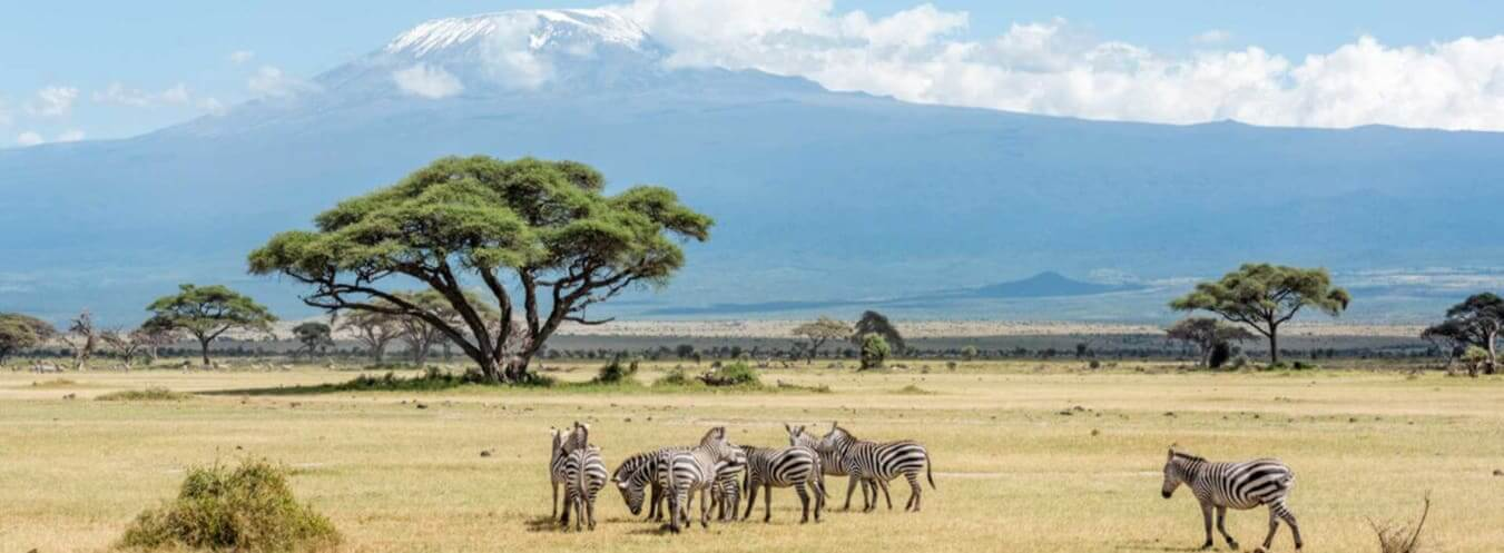 Kenia visa application and requirements